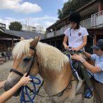 ウェルネス乗馬 at 東京乗馬クラブ
